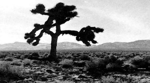 u2-the-joshua-tree-wallpaper-128-9